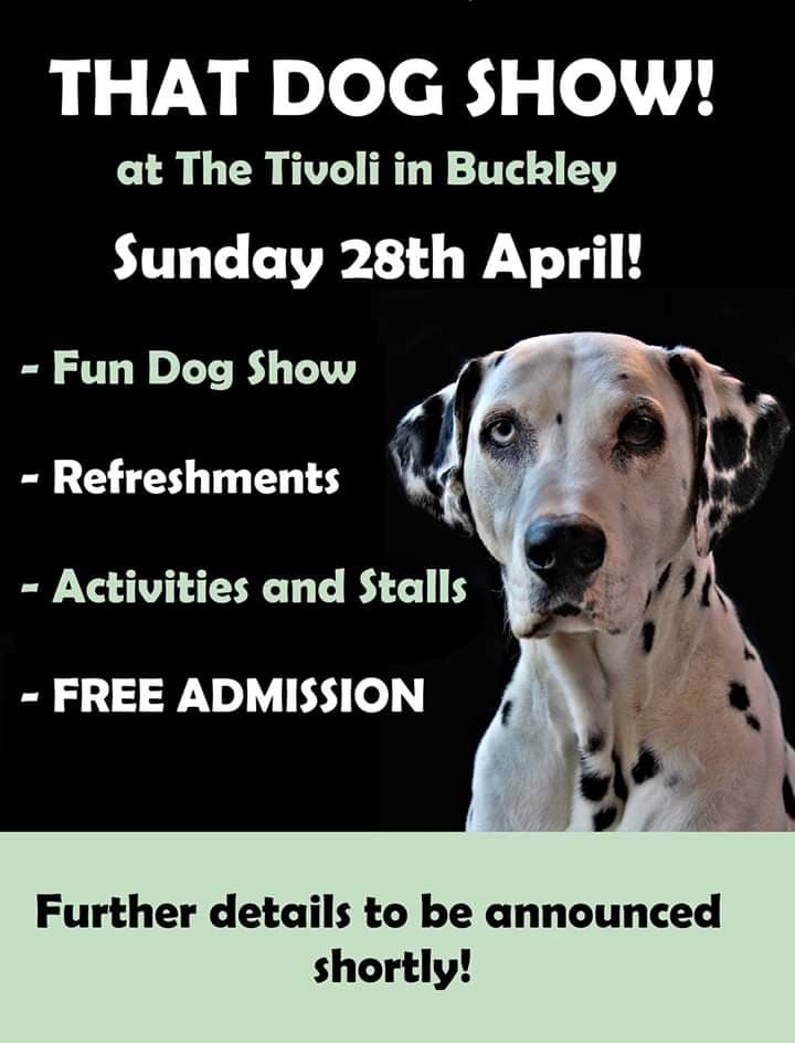 THAT DOG SHOW! Tivoli Buckley