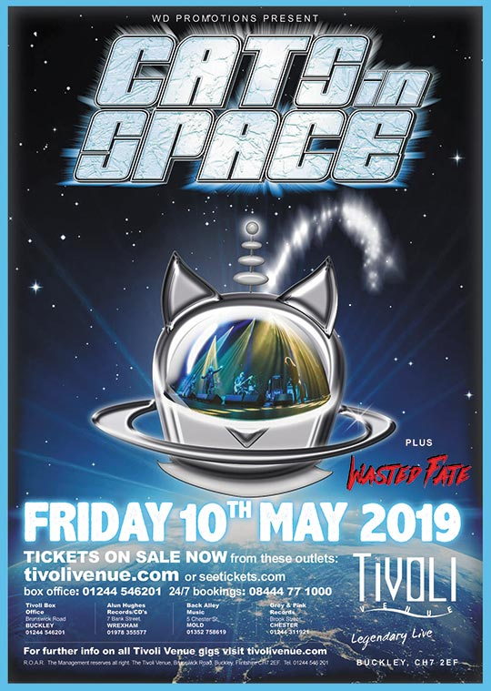Cats-in-Space-web2