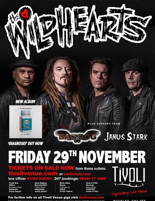 wildhearts-web8